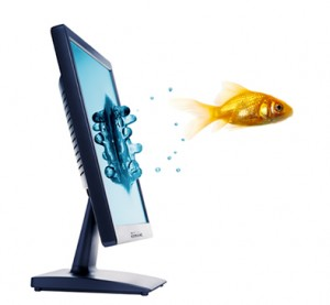 home-page-computer-fish1-300x277